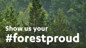 forestproud